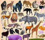 """Пазл """"36 Животных, Дикие животные"""", 300 деталей"""
